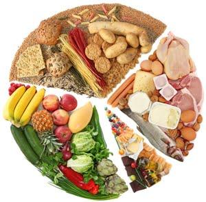 Dietetikus tanácsadás - Terápia szalon